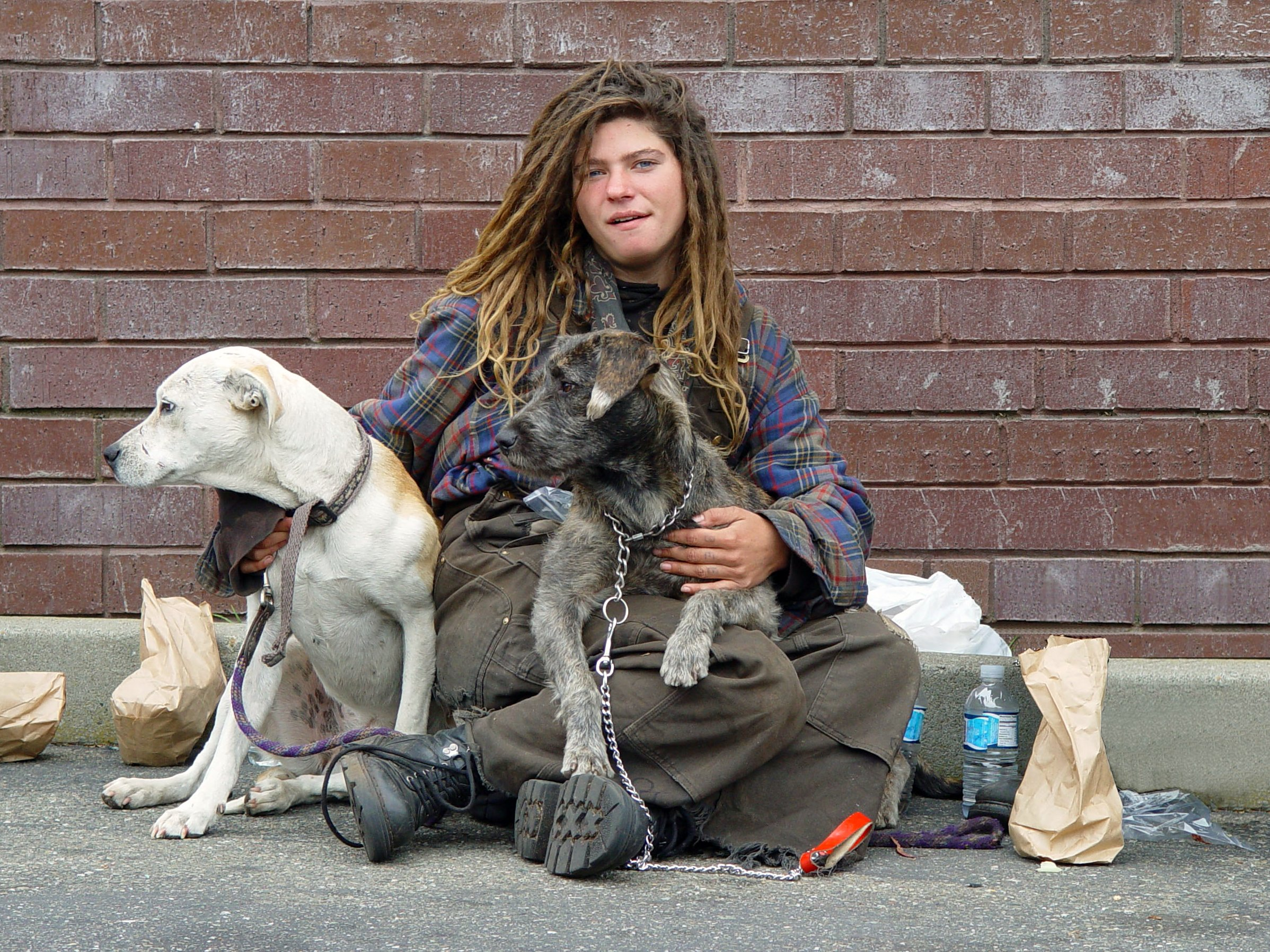 ANIMAL WELFARE BEST OF TIMES WORST OF TIMES